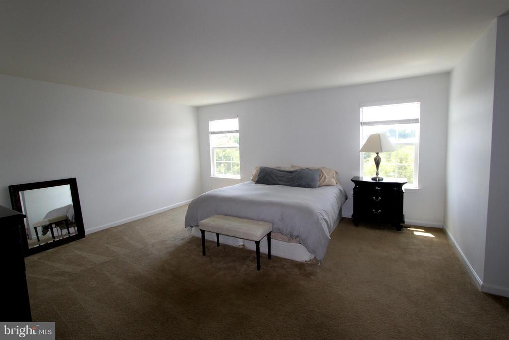 Master Suite - 16901 EVENING STAR DR, ROUND HILL