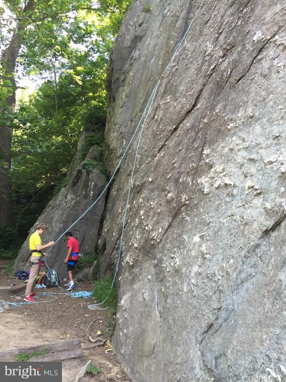 Minutes from Carderock climbing! - 9919 MACARTHUR BLVD, BETHESDA