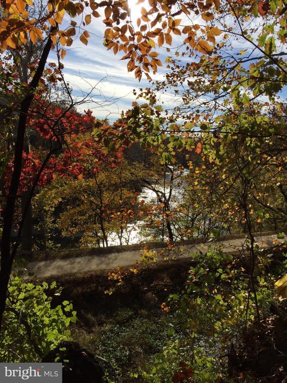 Fall area photo! - 9919 MACARTHUR BLVD, BETHESDA
