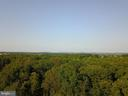 View above the trees to the east! - 38699 OLD WHEATLAND RD, WATERFORD