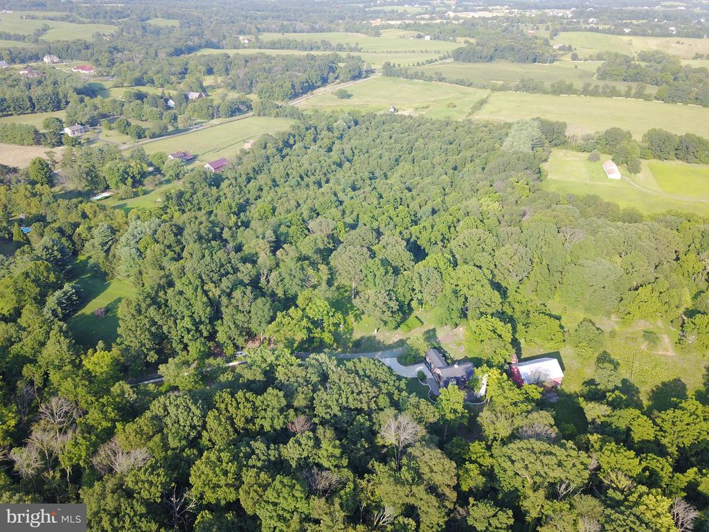 Aerial view of the property (wooded area) - 38699 OLD WHEATLAND RD, WATERFORD