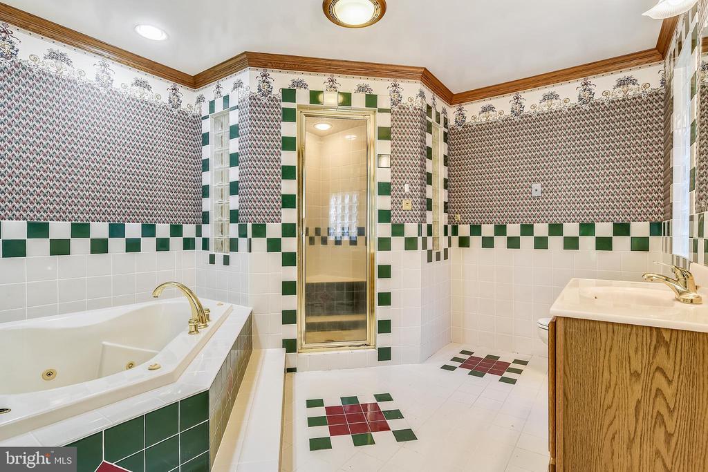 Master bath w dual shower head/steamer + jacuzzi - 8907 CHRISTINE PL, MANASSAS