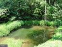 Spring-fed pond - 38699 OLD WHEATLAND RD, WATERFORD
