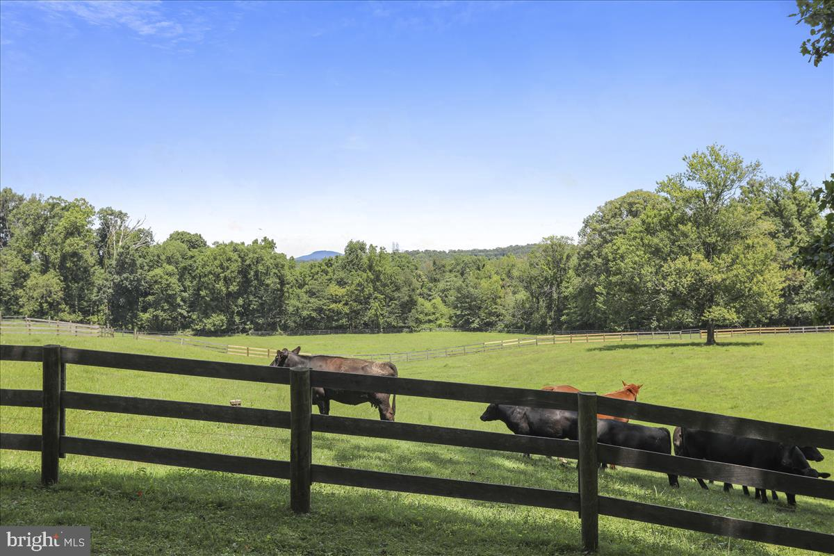 Additional photo for property listing at  Beallsville, Maryland 20839 Förenta staterna