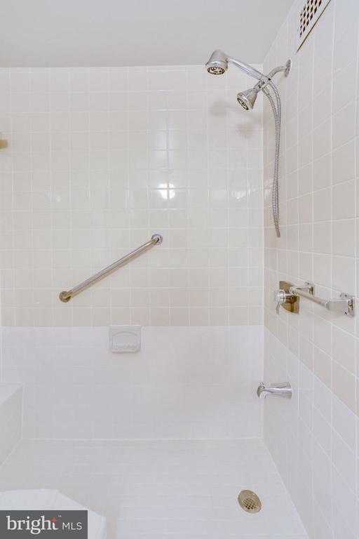 Master Bath Shower - 3800 FAIRFAX DR #314, ARLINGTON