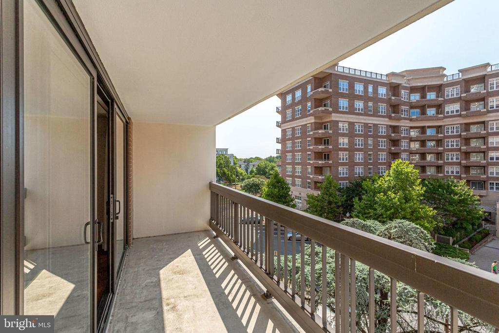 Balcony - Space for Relaxing and Growing Flowers - 3800 FAIRFAX DR #314, ARLINGTON