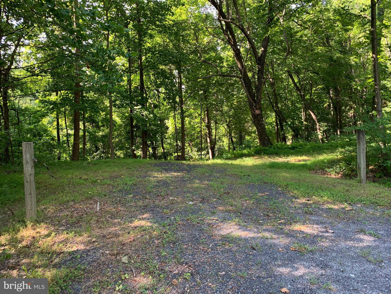 أراضي للـ Sale في Etlan, Virginia 22719 United States