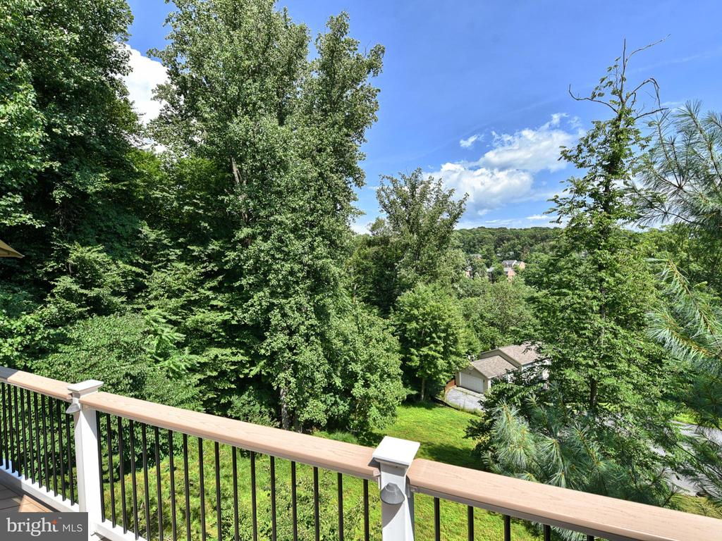View from Upper Deck - 9710 WOODFIELD CT, NEW MARKET