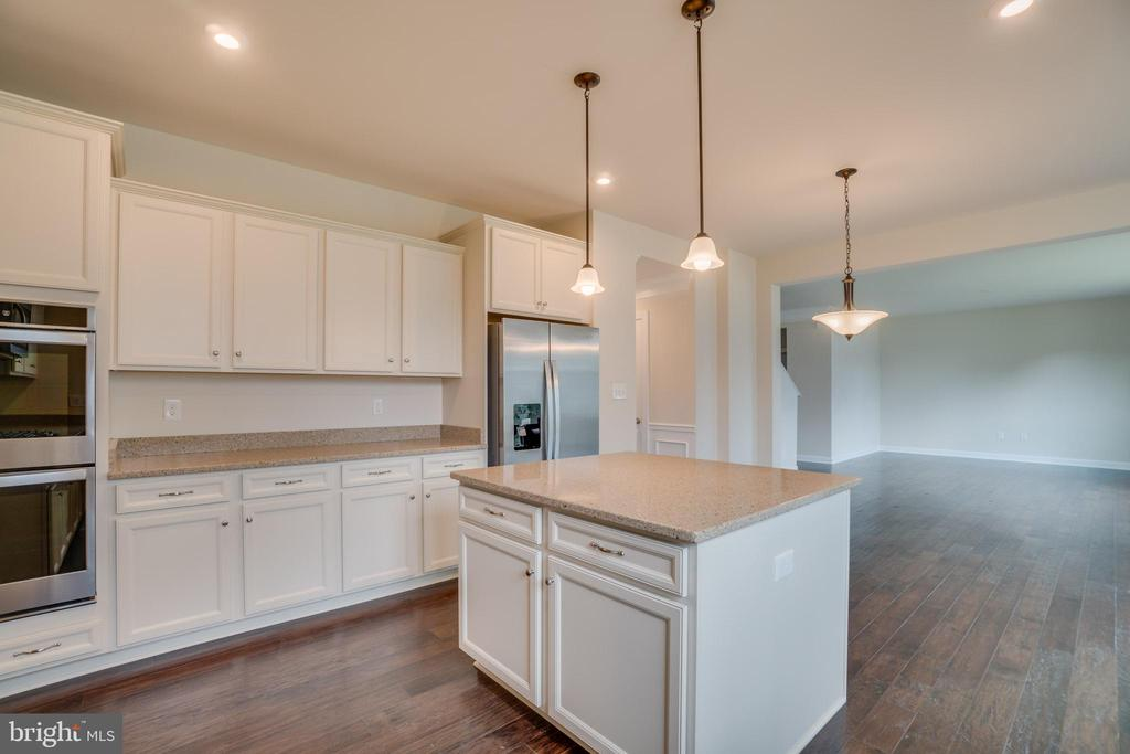 Gourmet Kitchen Package over $5,000 Upgrade - 23 IRON MASTER DR, STAFFORD
