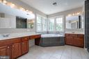 Luxury master bath - 26112 TALAMORE DR, CHANTILLY