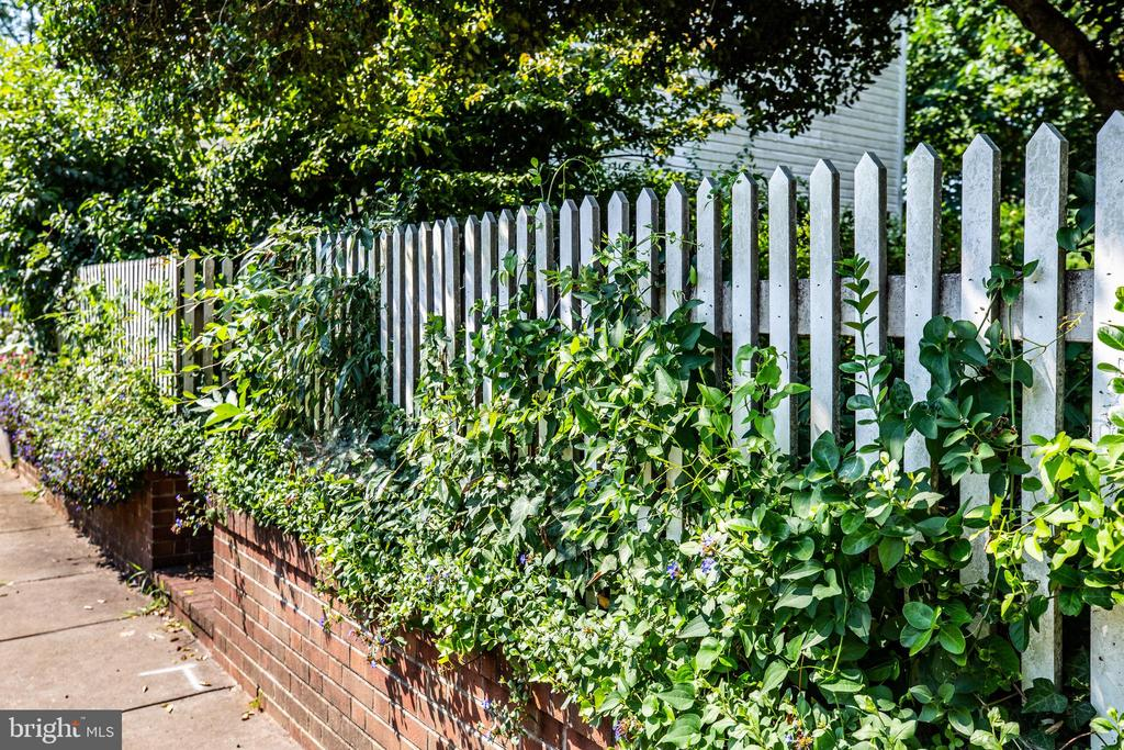 Douglas Street side garden and fence - 610 LEWIS ST, FREDERICKSBURG