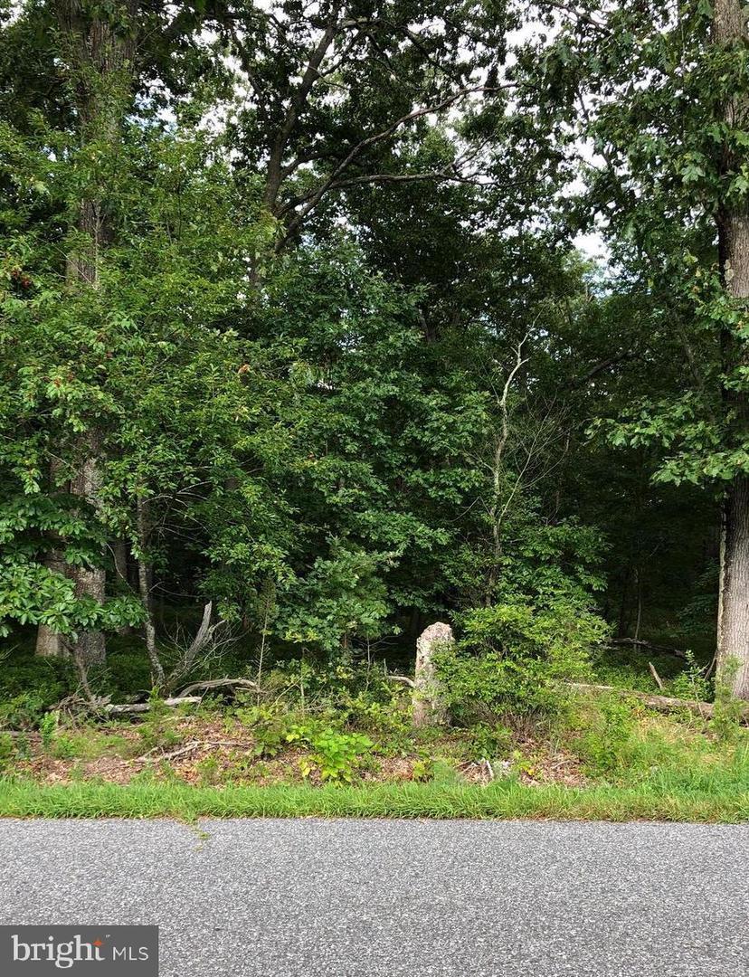 Земля для того Продажа на Milmay, Нью-Джерси 08340 Соединенные Штаты