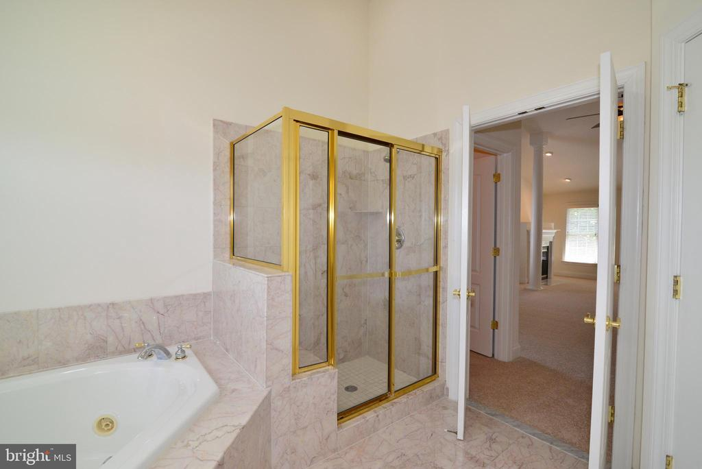 Master bathroom - 43980 RIVERPOINT DR, LEESBURG