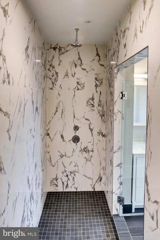 'Waterworks' Rainhead shower - 1345 K ST SE #PH2, WASHINGTON