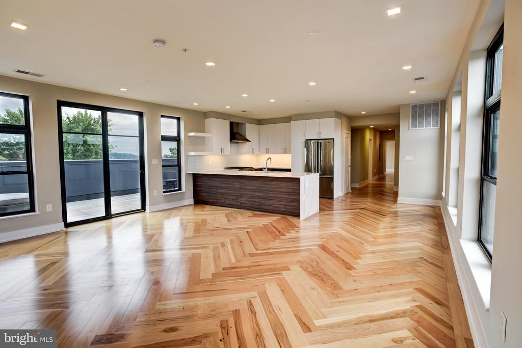 Lots of light and outdoor space - 1345 K ST SE #PH2, WASHINGTON