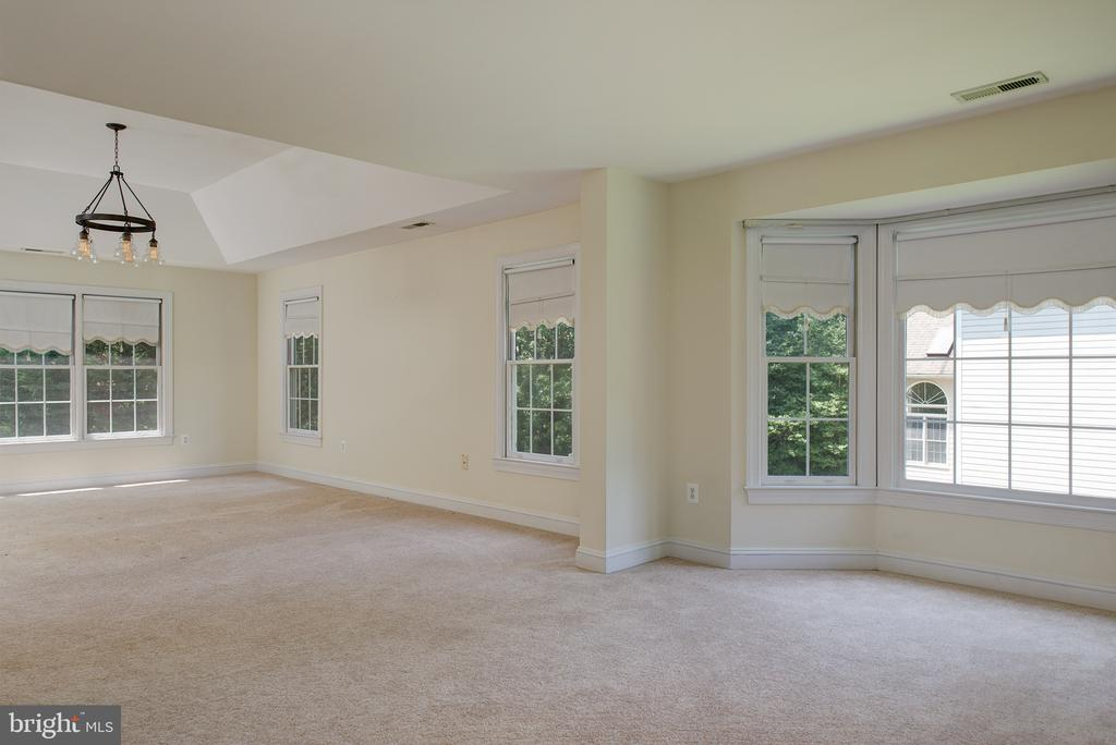 Massive Master Suite - 1144 ROUND PEBBLE LN, RESTON