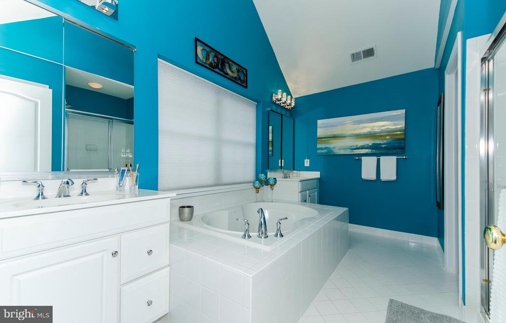 Dual vanities for the morning rush - 25233 RIDING CENTER DR, CHANTILLY