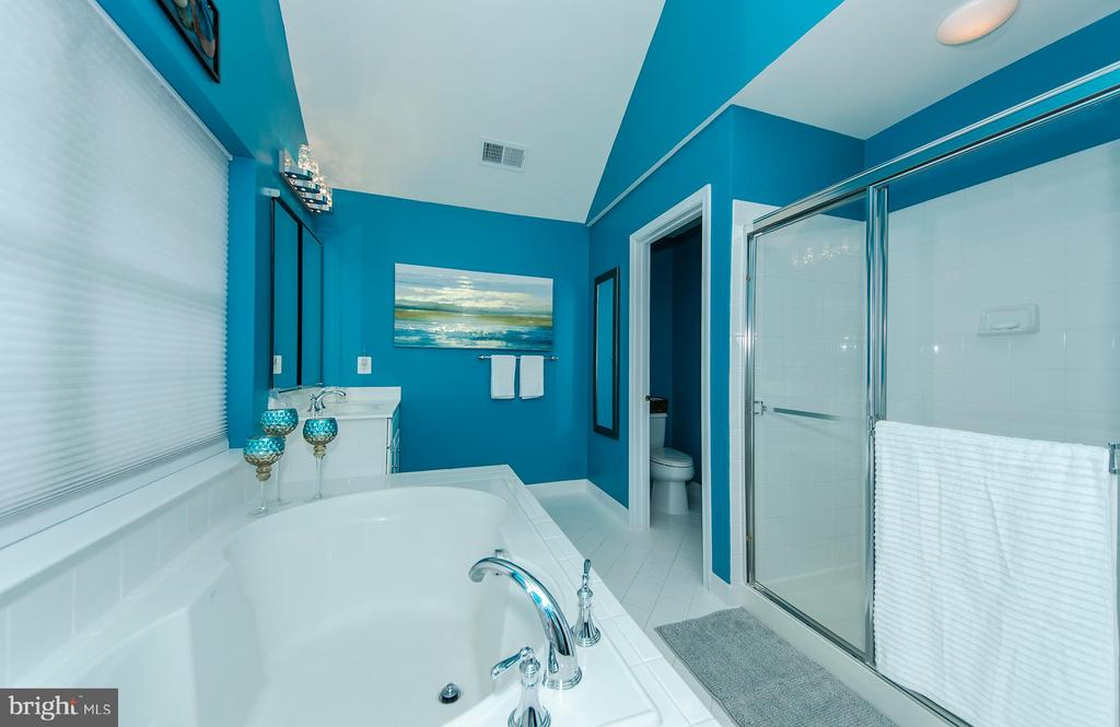 Glass showers doors and private lavatory closet - 25233 RIDING CENTER DR, CHANTILLY