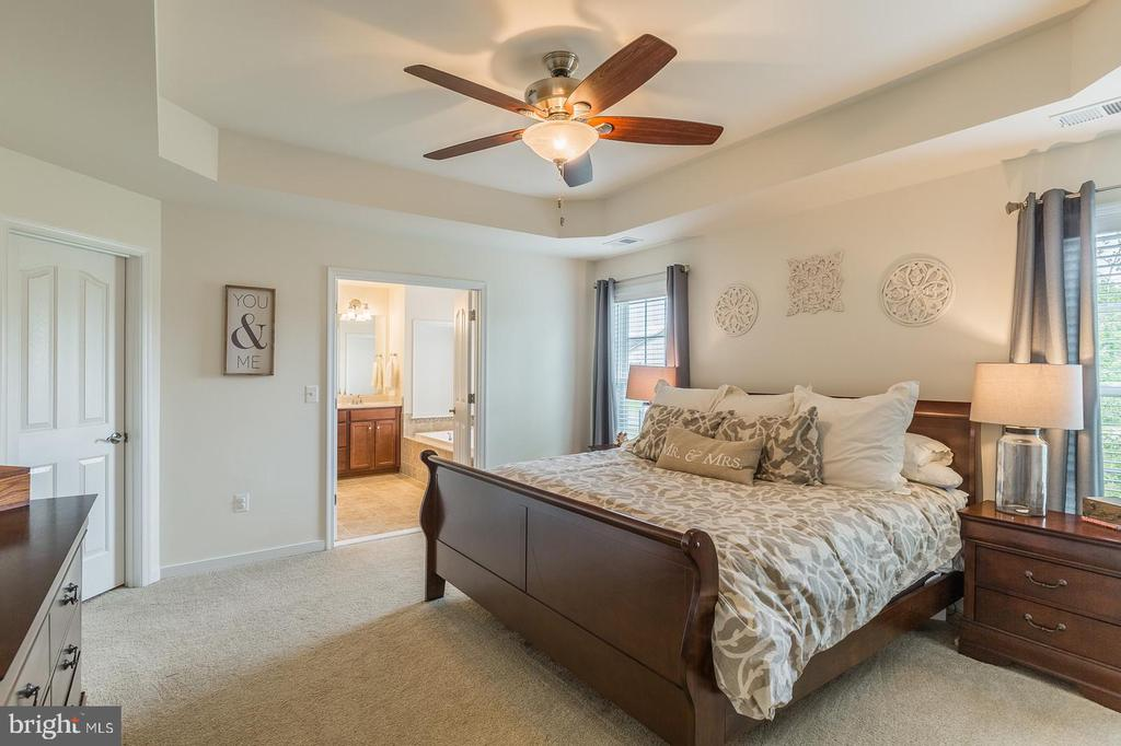 Master bedroom. The ceiling fan and blinds convey. - 9 WOODLOT CT, STAFFORD