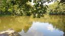 PRIVATE!!!  Wildlife Sanctuary  across from dock. - 8575 COBB RD, MANASSAS