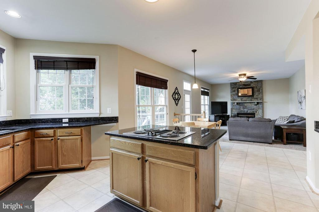 open concept! - 46626 WINTERSET CT, STERLING