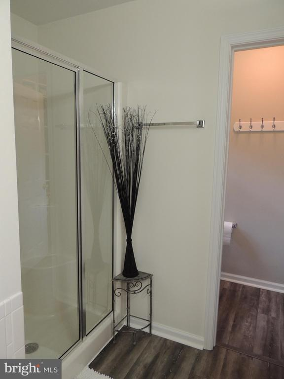 Separate Shower in the Master Bath - 12609 TOLL HOUSE RD, SPOTSYLVANIA