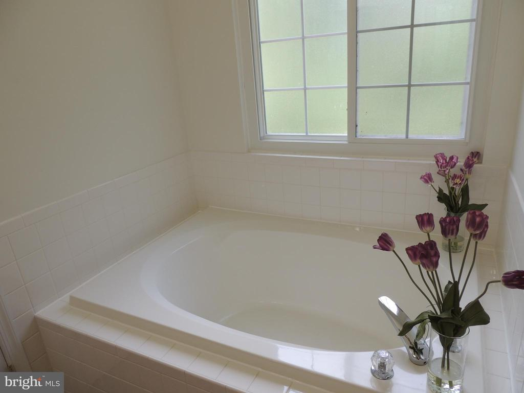 Full Size Master Tub - 12609 TOLL HOUSE RD, SPOTSYLVANIA