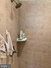 MBA separate shower -1 - 17972 SWANS CREEK LN, DUMFRIES