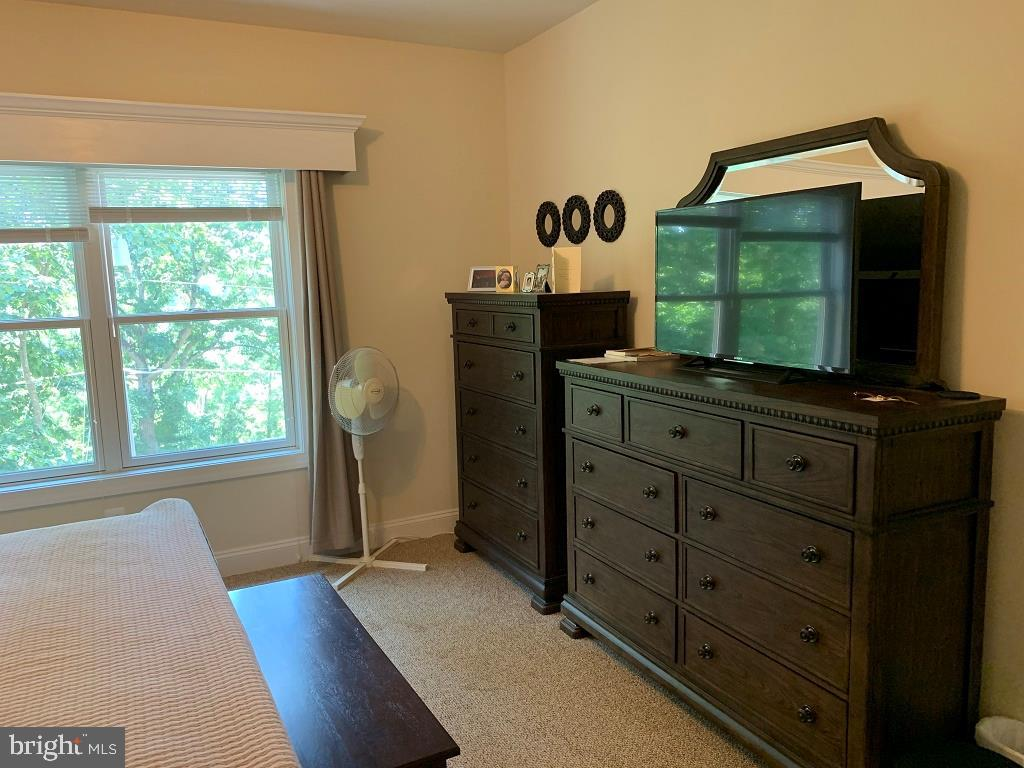 Master bedroom -2 - 17972 SWANS CREEK LN, DUMFRIES