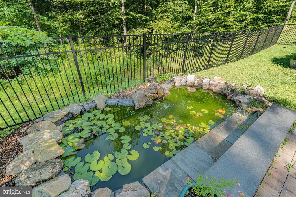 pond - 11606 LAWTER LN, CLIFTON
