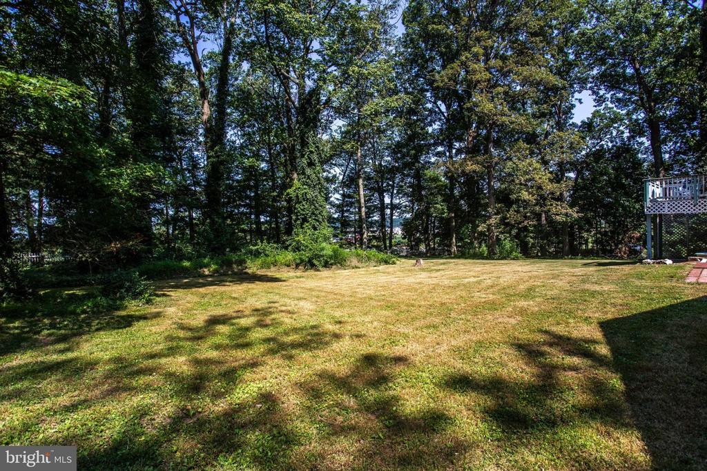Backyard - 4198 WINDY HILL DR, MONROVIA