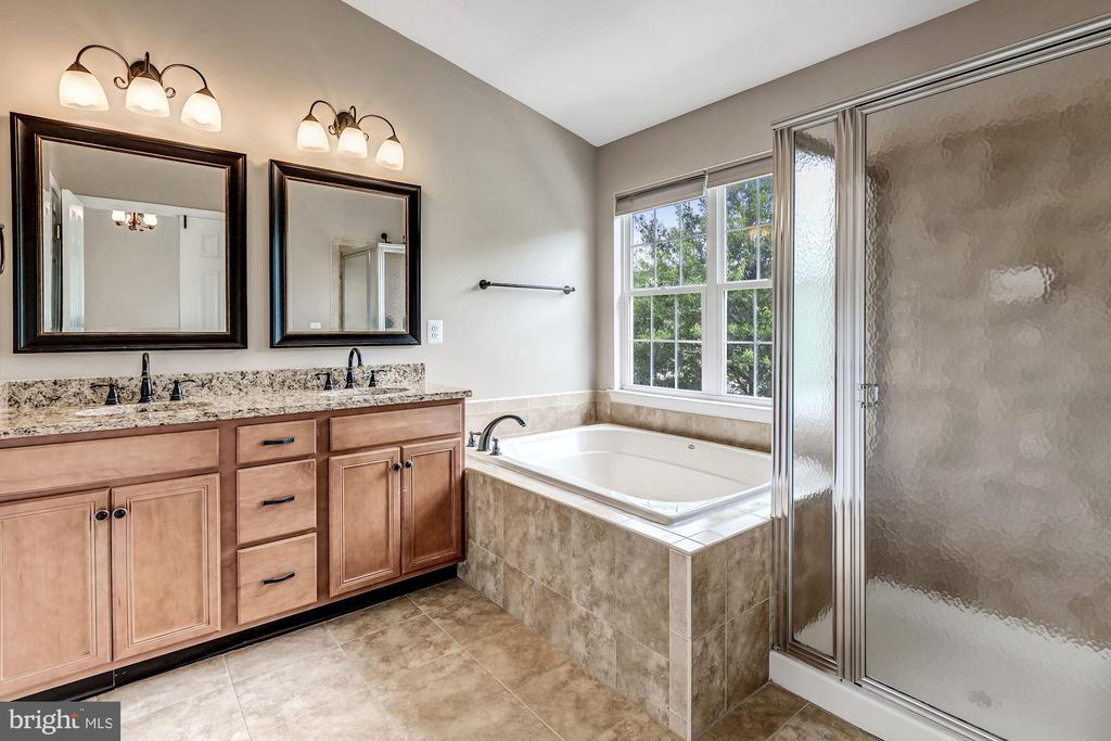 Luxury Master Bath - 43381 FRENCHMANS CREEK TER, ASHBURN