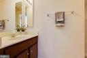 Basement full bath. - 24684 CAPECASTLE TER, ALDIE
