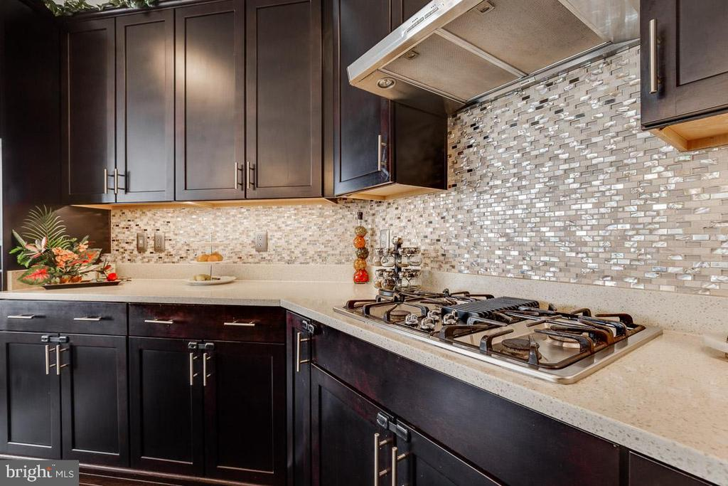 Cook with gas. - 24684 CAPECASTLE TER, ALDIE