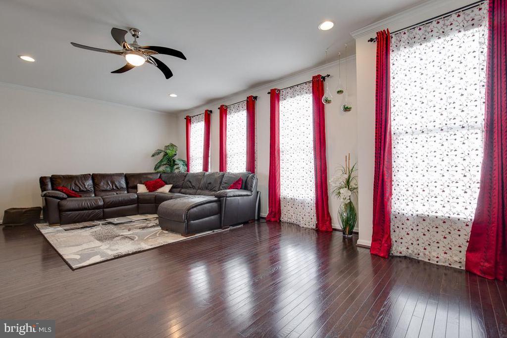 Living room. - 24684 CAPECASTLE TER, ALDIE