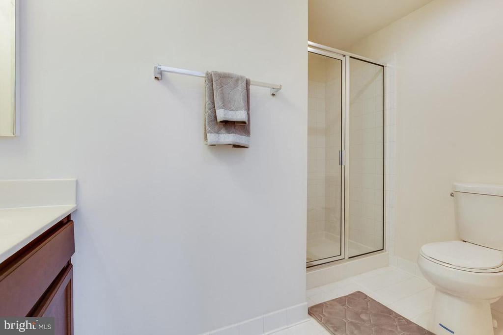 Basement full bath. - 24684 CAPECASTLE TER, ALDIE