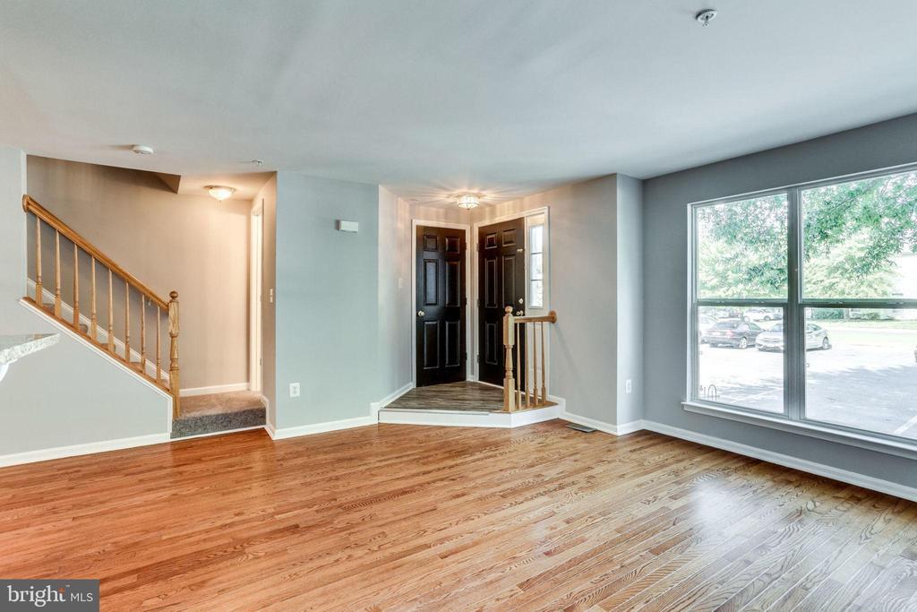 Foyer Entrance & Living Room Combo - 3822 DEVIL TREE CT #14-B, HYATTSVILLE