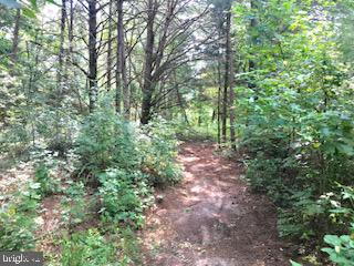 Land for Sale at Warsaw, Virginia 22572 United States