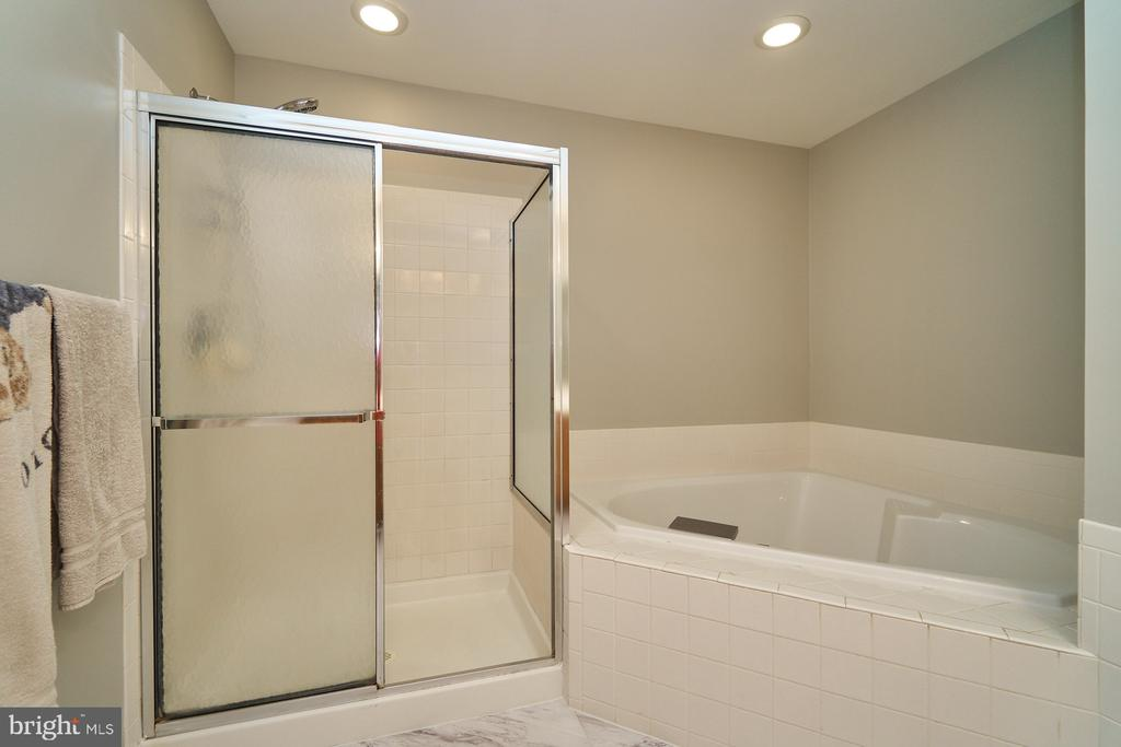 Master bath has a soaking tub & separate shower - 21284 HIDDEN POND PL, BROADLANDS