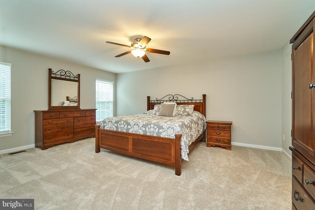 Master bedroom has new carpet  and paint - 21284 HIDDEN POND PL, BROADLANDS