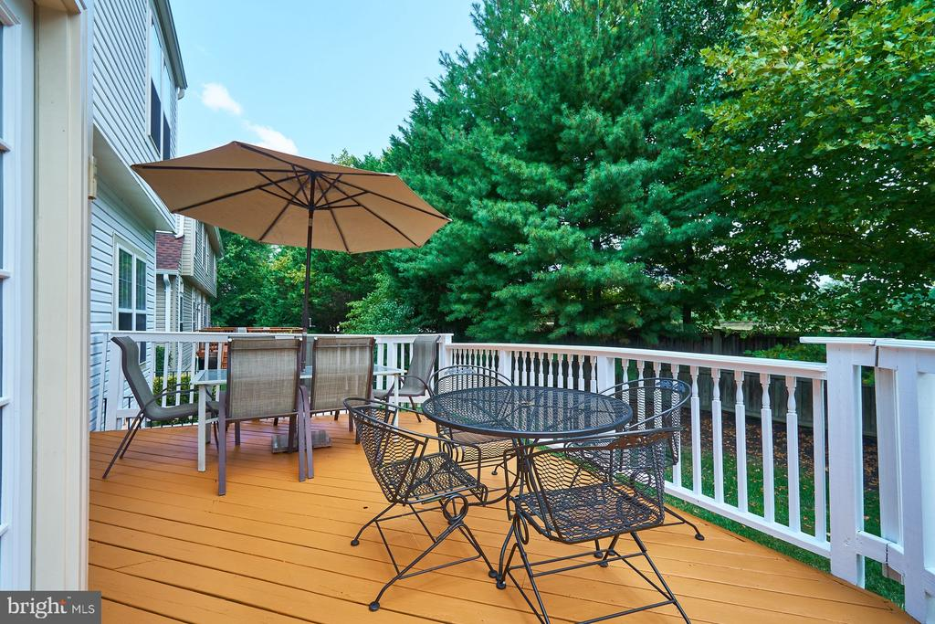 Recently painted rear deck - 21284 HIDDEN POND PL, BROADLANDS