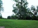 Side yard looking toward front yard. - 195 BEREA CHURCH RD, FREDERICKSBURG