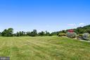Backyard View - 16875 DETERMINE CT, LEESBURG
