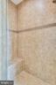 Master Bath Shower - 16875 DETERMINE CT, LEESBURG