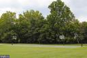 8 acre Confluence Park Basketball Court - 43535 FIRESTONE PL, LEESBURG