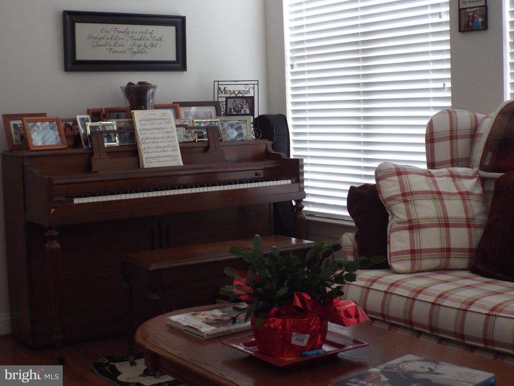 Play a tune entertain for fun day W/ 2nd fireplace - 22791 VICKERY PARK DR, BRAMBLETON
