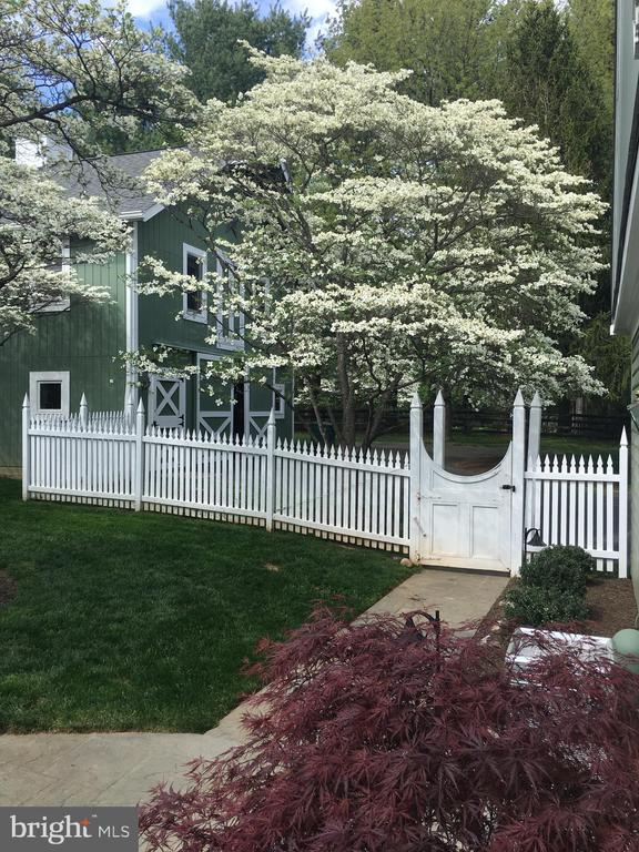 Dogwoods in Bloom. - 10114 LAWYERS RD, VIENNA