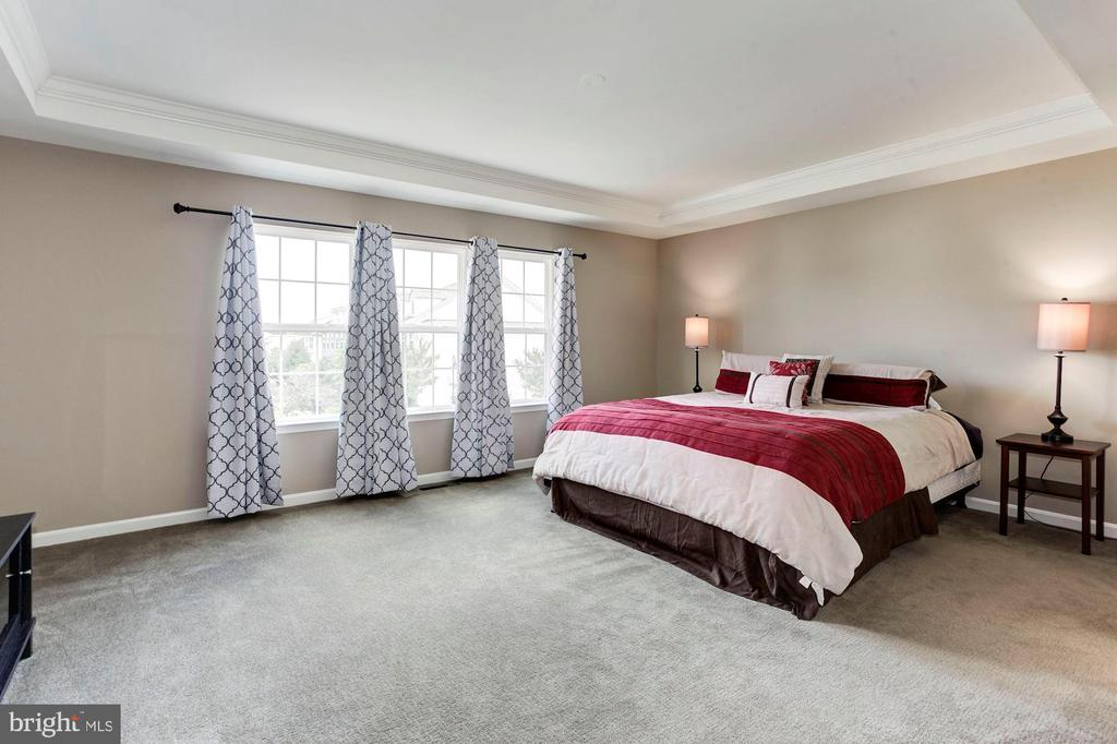 MASTER BEDROOM - LOVELY TRAY CEILING! - 8717 LIBEAU DR, MANASSAS