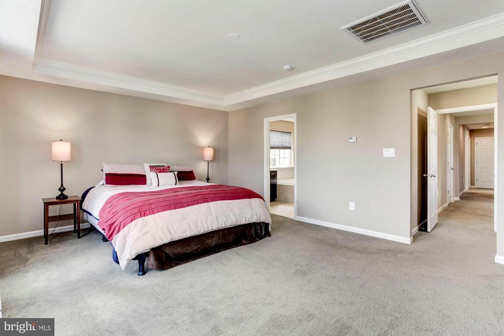 MASTER BEDROOM - SOOOOOO BIG! - 8717 LIBEAU DR, MANASSAS