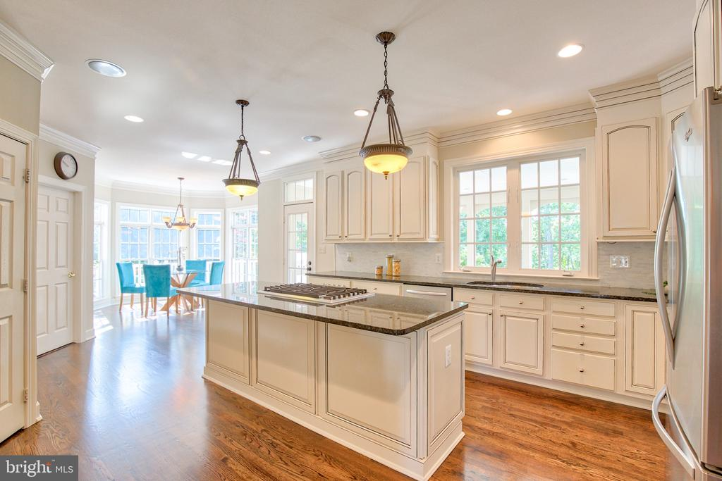 Updated kitchen with granite and stainless steel - 43535 FIRESTONE PL, LEESBURG